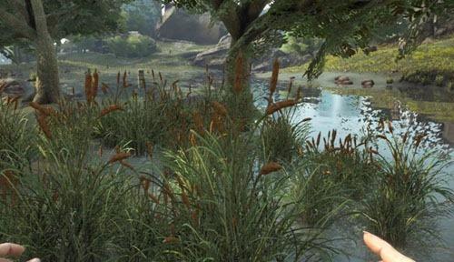 plant-x-Rare-flower5