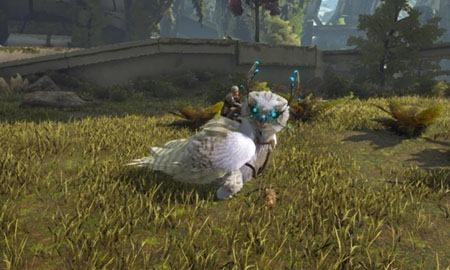 snow-owl2
