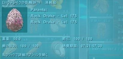 ロックドレイクの卵9